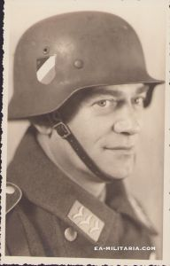 Luftwaffe Flieger Portrait