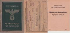Arbeitsbuch für Ausländer with Documents (Italian)