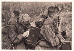 Waffen-ss ''Nachrichten'' Postcard