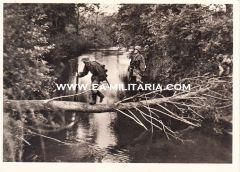 Waffen-ss ''Spähtrupp'' Postcard