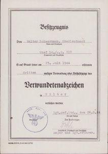 14./Gren.Rgt.317 VWA Silber Award Document